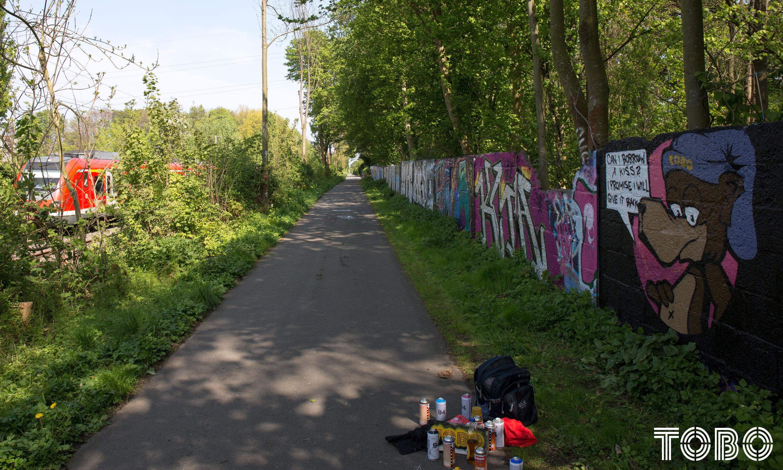 Tobo Erik Rotheim Graffiti Streetart Berlin Dortmund Style Train love hall of fame legal wall spray can art aerosol I think you are freaky and i like you alot