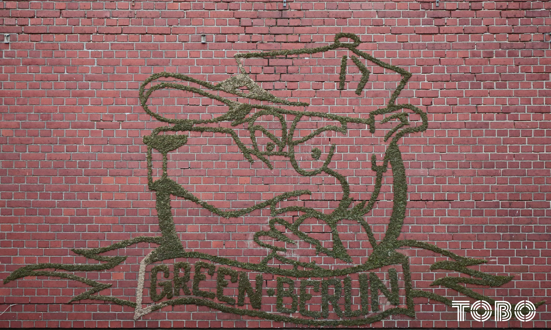 Tobo Erik Rotheim Graffiti Streetart Teufelsberg cat cute cat Shalmon moos urban art moss green berlin support verlassene orte abandoned places denkmalschutz